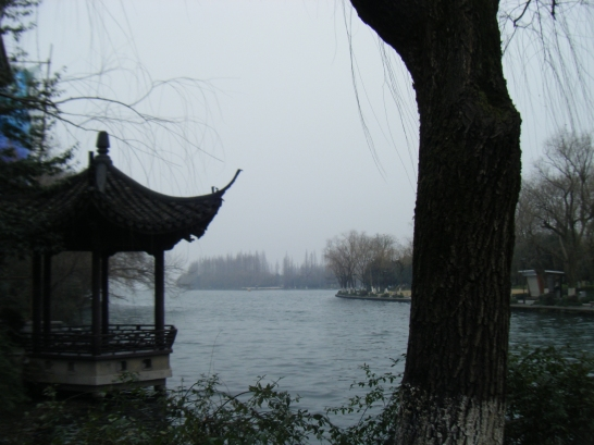 Fig. 2.2: Hangzhou China. Planning my midnight run. Figure out my next move.