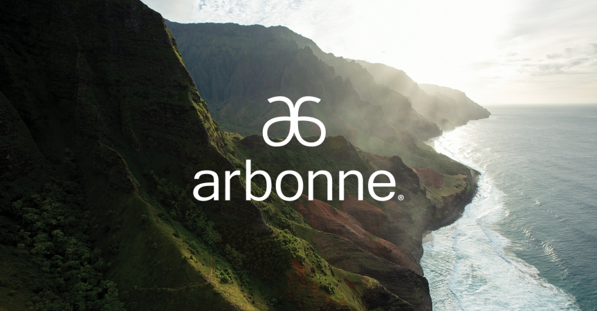 'Wins and Losses' after a YEAR as an Arbonne Independent Consultant.